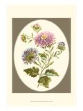 Antique Bouquet II