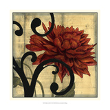 Dahlias and Scrolls IV