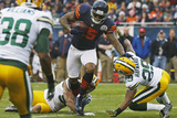 Chicago Bears and Green Bay Packers NFL: Brandon Marshall