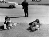 Witnesses to the Kennedy Assassination