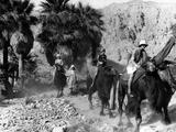 Camel Riders in California