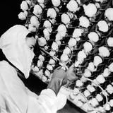 Manufacturing the New Wonder Drug  Penicillin