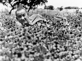 President Lyndon Johnson Lying in a Field of Flower at the LBJ Ranch  Summer  1966