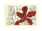Embellished Arena Botanical III
