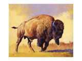 Tatanka