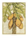Graphic Palms I