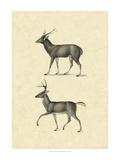 Vintage Deer II