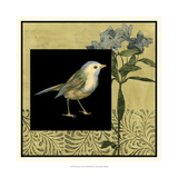 Bird Fantasy I