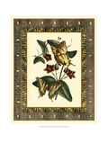 Leather Framed Butterflies I