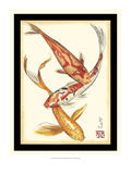 Koi Fish II
