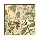 Botanical Quadrant III