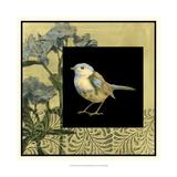 Bird Fantasy II