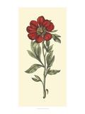 Embellished Blooming Peonies I
