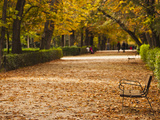 Parque Del Buen Retiro  Madrid  Spain