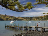 Jetty  Akaroa  Banks Peninsula  Canterbury  South Island  New Zealand