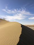 Sand Dune Ridge  Bruneau Dunes State Park  Idaho  USA