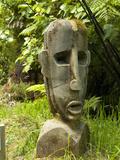 Art at Lochmara Lodge  South Island  New Zealand