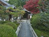 Japanese Garden  Kyoto  Japan