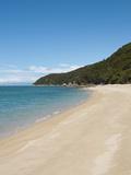 Landscape  Abel Tasman National Park  South Island  New Zealand