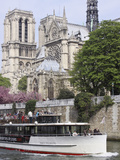 A Tour Boat Cruises by Notre Dame Cathedral  Paris  France