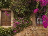 Flower-Covered Buildings  Old Town  Ciudad Monumental  Caceres  Spain