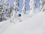 Mistie Fortin Skis Powder at Whitefish Mountain Resort in Whitefish  Montana  USA