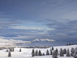 Looking Down onto Flathead Lake after Fresh Snowfall in Elmo  Montana  USA