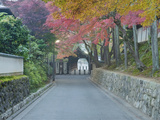 Tokufuji Temple  Kyoto  Japan