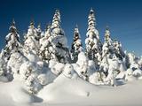 Cabot Trail  Nova Scotia  Canada