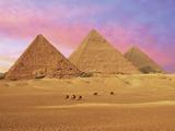Pyramids at Sunset  Giza  Cairo  Egypt