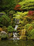Spring  Portland Japanese Garden  Portland  Oregon  USA