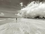 White Sand Beach  Ilha De Itamaraca  Pernambuco  Brazil