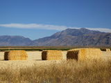 Hay Bales  Butte County  Idaho  USA