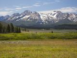Meadow and Mountains  Sawtooth National Recreation Area  Idaho  USA