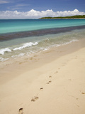 Footprints in Sand on Natadola Beach  Coral Coast  Viti Levu  Fiji  South Pacific
