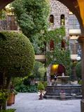 Courtyard  San Miguel De Allende  Mexico
