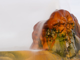 Fly Geyser  Black Rock Desert  Nevada  USA