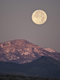 Full Moon Setting over Snow-Covered Magdelena Mountains at Socorro  New Mexico  USA