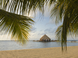 A Palapa and Sandy Beach  Placencia  Belize