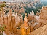 Thor's Hammer  Hoodoo  Bryce Canyon National Park  Utah  USA