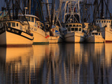 Shrimp Boats  Georgia  USA