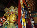 Dalai Lama Picture Beside Maitreya Buddha  Thiksey Monastery  Thiksey  Ladakh  India