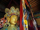 Dalai Lama Picture Beside Maitreya Buddha  Thiksey Monastery  Thiksey  Ladakh  India