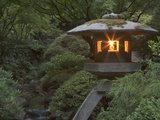 Illuminated Lantern in Portland Japanese Garden  Oregon  USA