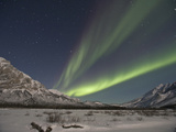 Aurora Borealis  Arctic National Wildlife Refuge  Alaska  USA
