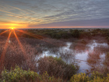 Sunset over Wetlands at Ocean Shores  Washington  USA