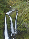 Triple Falls on Oneonta Creek  Columbia River Gorge  Oregon  USA
