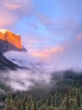 Alpenglow  Sunset Colors the Top of El Capitan  Yosemite  California  USA