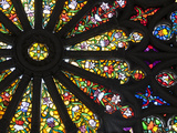 Stained Glass Detail National Basilica  Quito  Ecuador