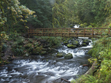 Footbridge across Oneonta Creek  Columbia River Gorge  Oregon  USA